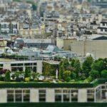 Živá architektura a integrovaná příroda: Makro architektura – mikro urbanismus